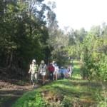honuaula-makahi