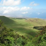 Koai'a Tree Sanctuary/Kohala Forest-November 18, 2017 -RSVP needed!