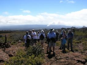 mauna-loa-strip-trail