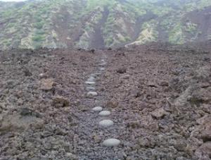 milolii-trail