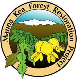 Mauna Kea Forest Restoration Project at Ka'ohe, March 16 2014--Must RSVP!