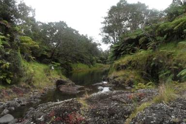 wailuku-river