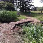 Waimea Nature Park and Greenway Trail-May 20, 2017