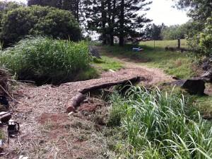 waimea-greenway-trail
